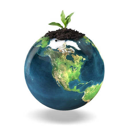 plant seed: Leaf, Plant, Seed.