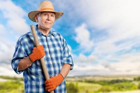 senior adult man: Gardening, Senior Adult, Man.