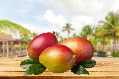 tropical climate: Mango, Tropical Climate, Fruit. Stock Photo