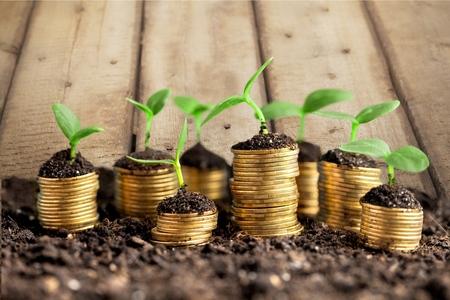 prosperidad: Riqueza, concepto, thai.