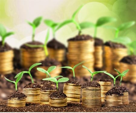 energy saving: Inversión, cuentas de ahorros.