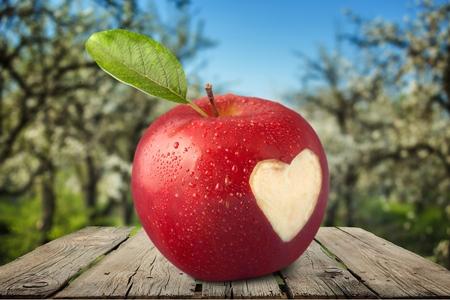 missing bite: Heart Shape, Apple, Love.