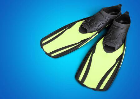 flipper: Flipper, Swimwear, Isolated.