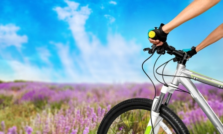 cycling mountain: Bicycle, Cycling, Mountain Bike.