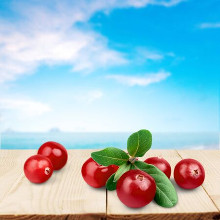 cranberry fruit: Cranberry, Fruit, Isolated.