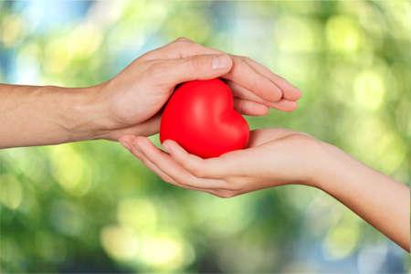 heart in hand: Heart, hand, love. Stock Photo
