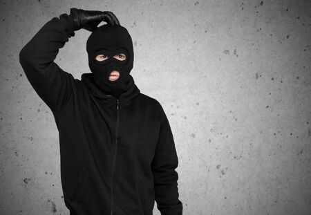 computer hacker: Burglar, Thief, Computer Hacker.