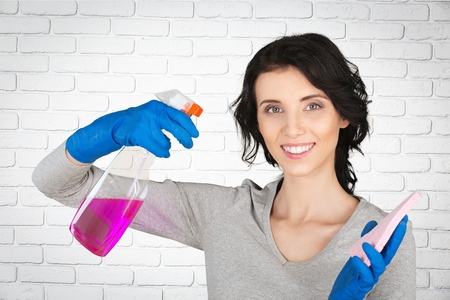 house cleaner: Cleaning, Cleaner, House.