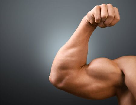 bicep: Body Building, Bicep, Weight Training.