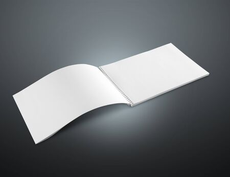 photo realism: Blank, mock, up.