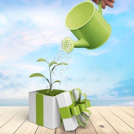 medio ambiente: Regalo, Medio ambiente, verde. Foto de archivo