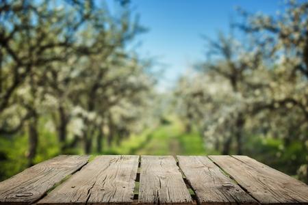 Garden, tree, farm.