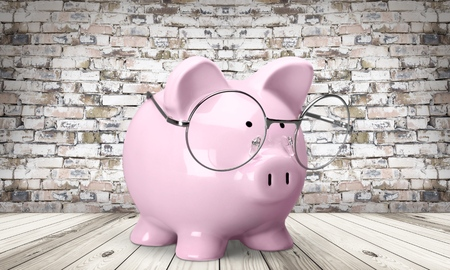 financial advisor: Pig, Tax, Financial Advisor.