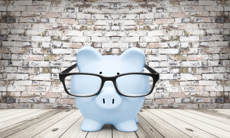 Pig, Tax, Financial Advisor. Stock Photo - 42721080