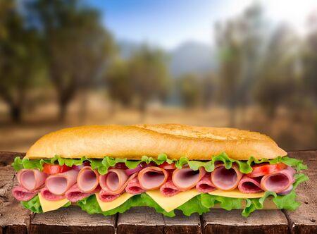comida rápida: Sandwich, Bun, comida r�pida. Foto de archivo