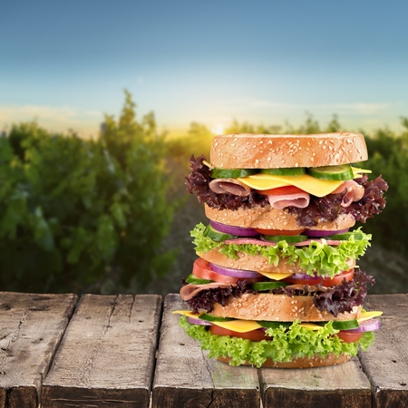 large: Sandwich, Large, Food. Stock Photo