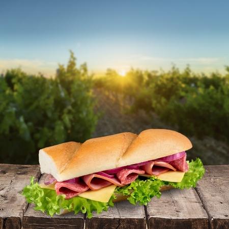 romaine: Sandwich, Bun, Fast Food. Stock Photo