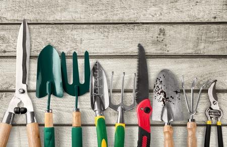 Tuingereedschap, tuinieren, Gereedschap. Stockfoto