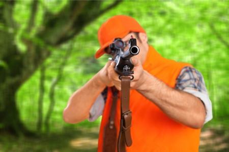 fusil de chasse: Chasse, Hunter, Fusil. Banque d'images