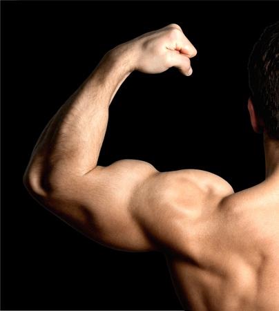 muscular build: Human Muscle, Bicep, Muscular Build.
