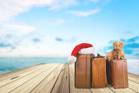 teddy: Travel, Christmas, Luggage.