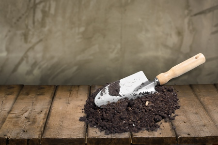 shovel in dirt: Shovel, Dirt, Gardening Equipment.