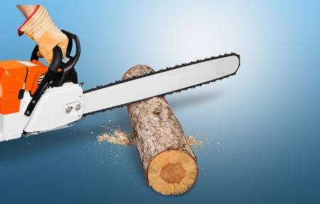 boom kappen: Chainsaw, Tree, Cutting.
