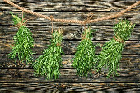 melissa: Bunch, melissa, leaves. Stock Photo