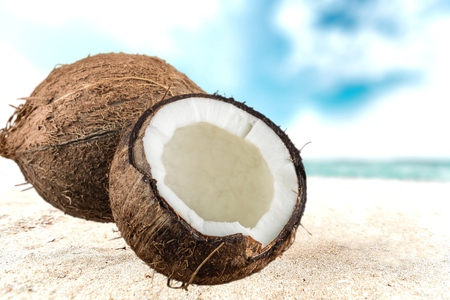 tropical climate: Coconut, Coco, Tropical Climate.