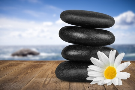 lastone therapy: Stone, Flower, Single Flower.