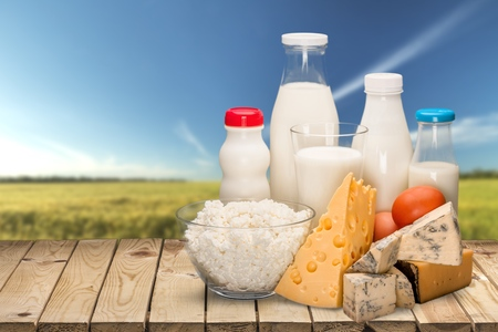 dairy product: Dairy Product, Milk, Cheese. Stock Photo