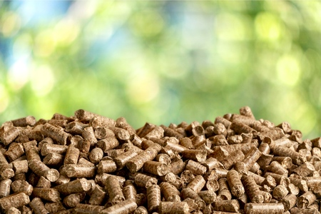 wood chip: Biofuel. Stock Photo