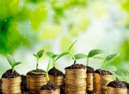 prosperidad: Crecimiento.