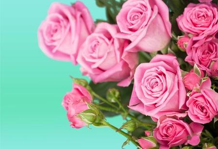 bouquet de fleurs: Rose.  Banque d'images