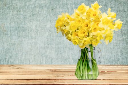 daffodils: Daffodils. Stock Photo