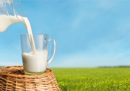 milk jugs: Milk. Stock Photo