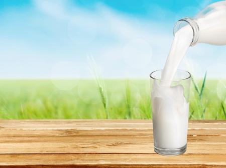 the milk: Milk. Stock Photo