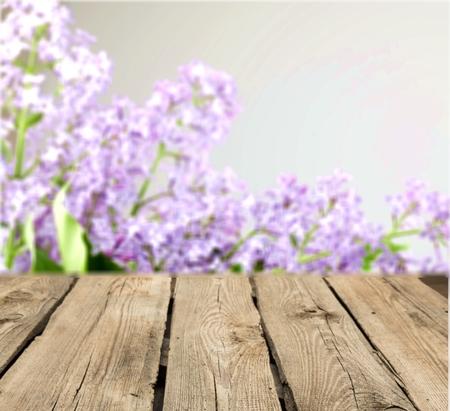 madera: Wood.
