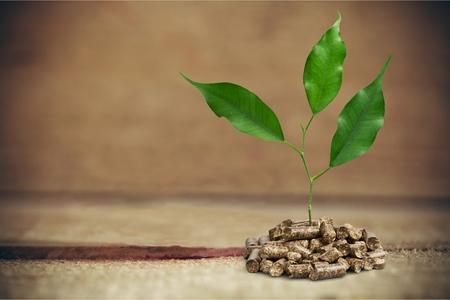 briquettes: Biomass pellets.