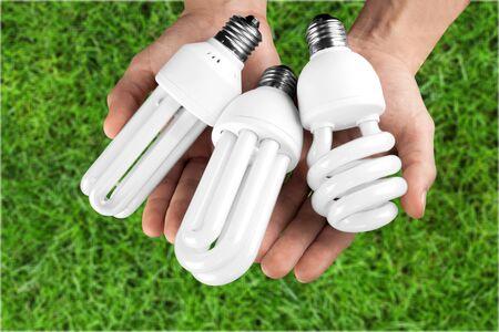 light bulbs: Bombillas.