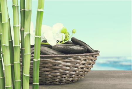 lastone: Bamboo and Orchid.