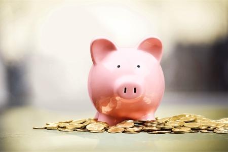 piggy bank: Piggy Bank.