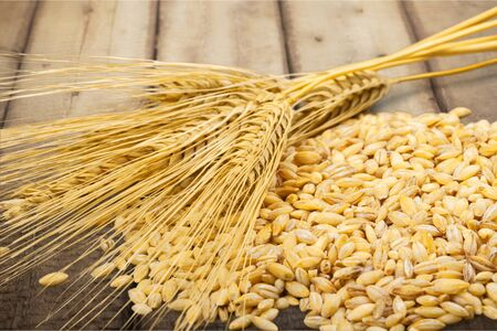 processed grains: Processed Grains. Stock Photo