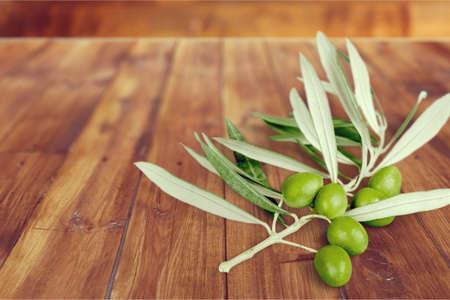 rama de olivo: Olive Branch.