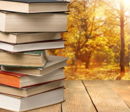 literature: Literatura. Foto de archivo
