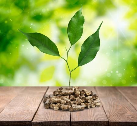 biomass: Biomass pellets.