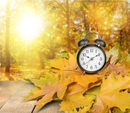 fall time: Autumn. Stock Photo