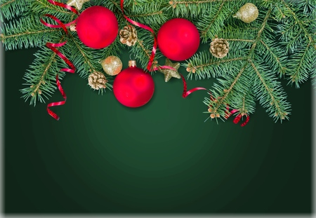christmas backgrounds: Xmas branch.