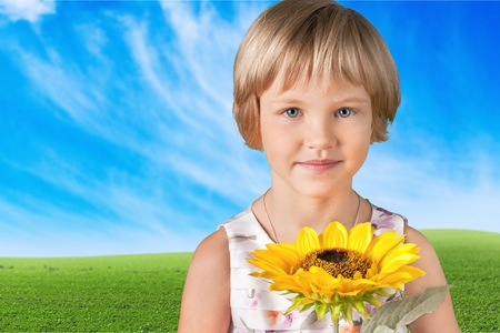 preadolescent: Sunflower. Stock Photo