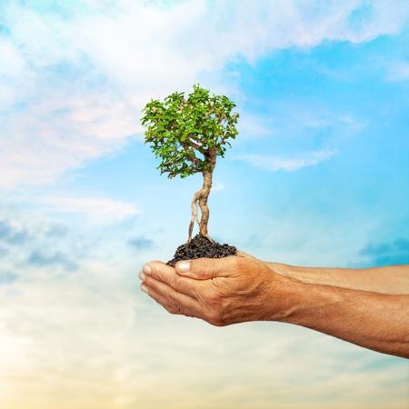longevity medicine: Environmental care.